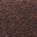 Mustard Seed Small