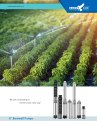 6 5HP AC Solar Submersible Pump With Controller