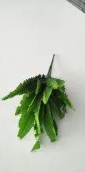 Green Hanging Leaf, For Decoration