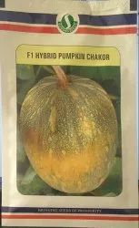 Yellow HYBRID PUMPKIN - CHAKOR, For Agriculture, Packaging Type: Pouch