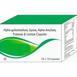 Alpha-Galactosidase, Lipoase, Alpha-Amylase, Protease & Lactase Capsules