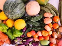 Fresh Vegetables And Fruits (Natural Farming)