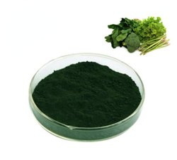 Chlorophyll Natural Food Colour