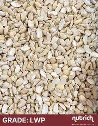 Nutrich LWP Broken Cashew Nut