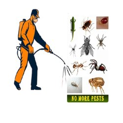 Commercial Pest Control License, in Pan India