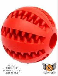 Dog Play Ball