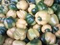 Colored Capsicum Seed