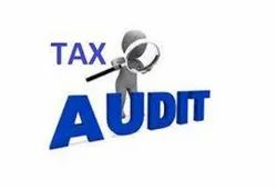 Individual Consultant Offline Income Tax Audit Services