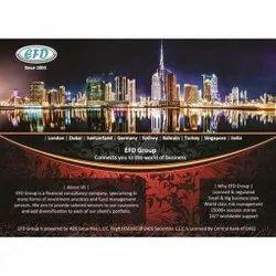 Company Catalogue Designing Services