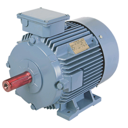 0.50HP BCH ELECTRIC MOTOR