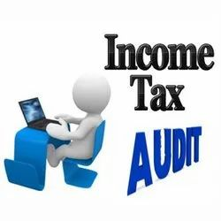 Income Tax Audit Service