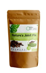 Ayura Origins Nature's Joint Fix, Non prescription, 200 G