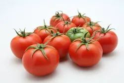 red HYBRID TOMATO - CHIRAYU / HYVEG, For Agriculture, Packaging Type: Pouch