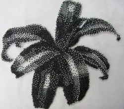 Embroidered Motifs