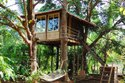 Wooden Tree House Mumbai - Pune - Nagpur - Nashik - Maharashtra