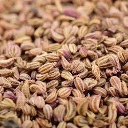 Ajwain Seed, 1 Kg