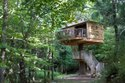 Tree House Construction Near Me Indore - Bhopal - Jabalpur - Gwalior - Madhya Pradesh