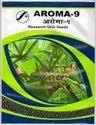 Research Black Gram Seed (urad), Packaging Size: 1 Kg