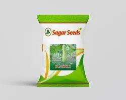 SBPL Rasili F-1 Hybrid Bottle Gourd Seed, for Agriculture Purpose