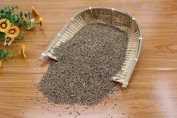 Brown Cumin Seeds Jeera UMA Jodhpur, Packaging Type: PP Bags, Packaging Size: 30 KG