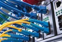 Networking Solution Service, Delhi