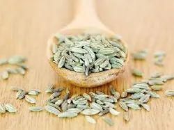 Green Fennel Seed Souff, Packaging Size: 40kg