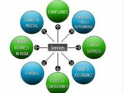 Chartered Accountant Consultancy Service