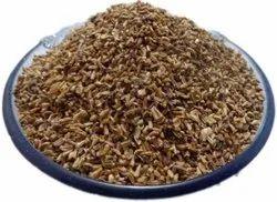 Kaasni Seeds