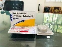 Oxyclozanide & Levamisole Bolus (Vet.)