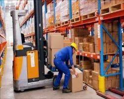 Male Warehouse Manpower Service, Pan India