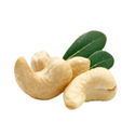 Bathani White Lwp Cashew Nut, Packaging Size: 25kg, Grade: W210