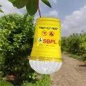 Fruit Fly Trap Glass