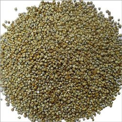 Brown Bajra, For Use In Cattle And Poultry Feed, Organic