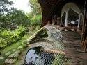 Tree House Resort Construction Thiruvananthapuram - Ernakulam - Kozhikode - Kollam - Kerala