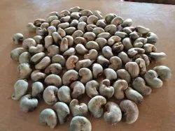 Bathani Tanzania Raw Cashew Nuts, Packaging Type: Jute Bag, Packaging Size: 25kg