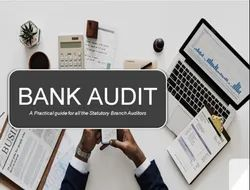 Consulting Firm Retainer Based Bank Audit Services, Type Of Industry Business: Banking