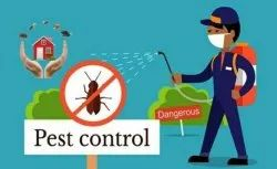 Chemical based Cockroaches Pest Control Services