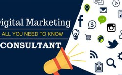6 Days Commercial Digital Marketing Consultant In Delhi