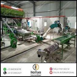 380 V Automatic Cashew Processing Line