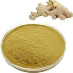 Ginger Powder, Packaging Type: Bag, Packaging Size: 20 kg