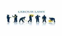 Labour Law Service