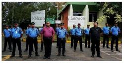 Trained Security Guard Service, No Of Persons Required: 10