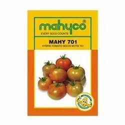 HYBRID TOMATO - MAHYCO / MAHY 701