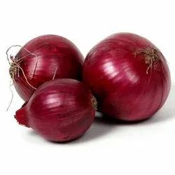 Dry A Grade Onion, For Food, Onion Size Available: Large