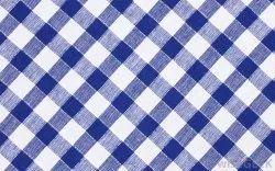 Blue Checked Cloth