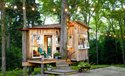 Tree House Cottage Siri - Tughlqabad - Shahjahanabad - New Delhi - Delhi