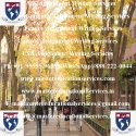 Overseas Education Consultants
