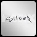 Flash Silver Spray Paint