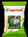 Karna F-1 Hybrid Pumpkin Seeds