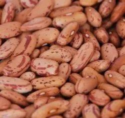 Kidney Beans/Rajma Beans, Organic